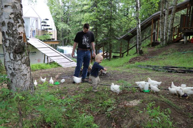 Guests' kids enjoying the chickens at Jupiter Garden
